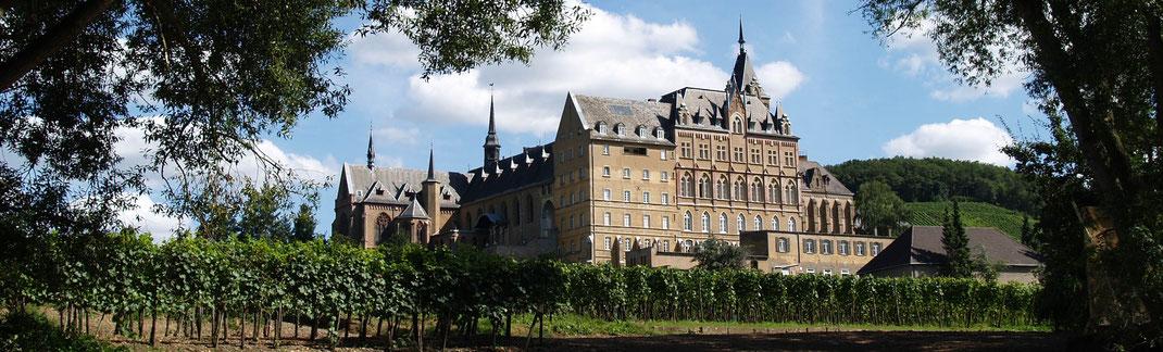 Eine Weinprobe im Ahrtal an der Ahr im Kloster Calvarienberg wird Ihnen ganz besondere und unvergessliche Einblicke in die Geschichte und in den Weinbau bieten.