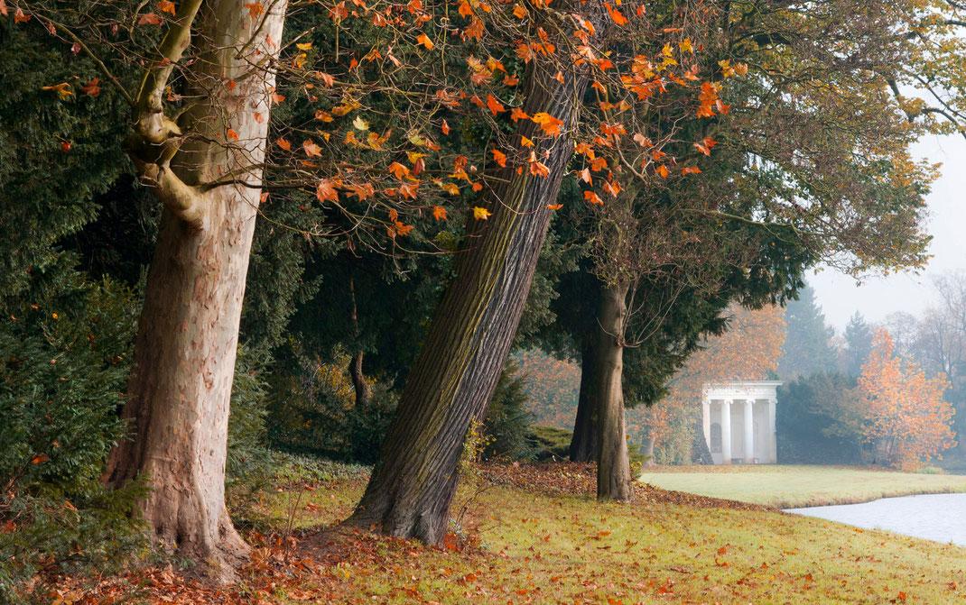 Fotoworkshop Dessau-Wörlitzer Gartenreich, Wörlitzer Park