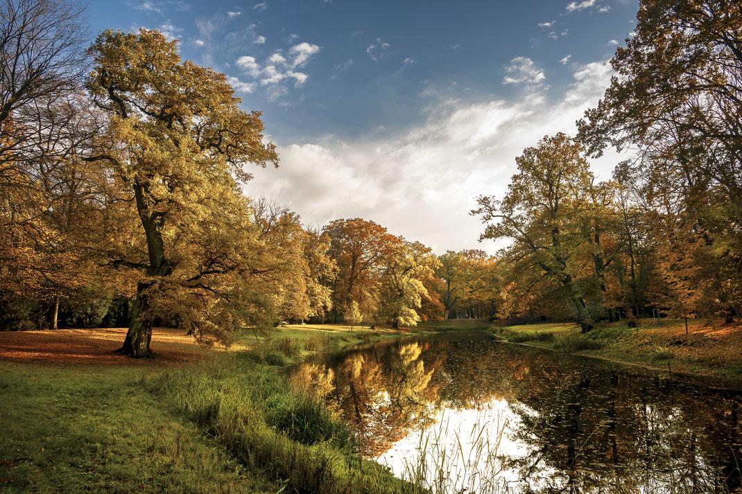 Dessau-Wörlitzer Gartenreich, Luisium