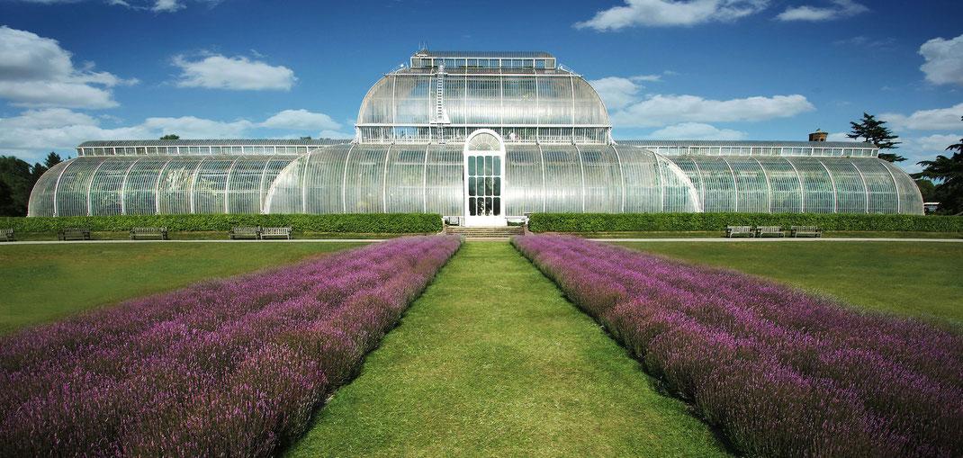 Fotoworkshop Südengland, Royal Botanic Gardens Kew