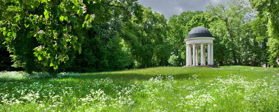 Foto-Workshop Dessau-Wörlitzer Gartenreich, Fotoworkshop Dessau, Garden Photographer, Sebastian Kaps