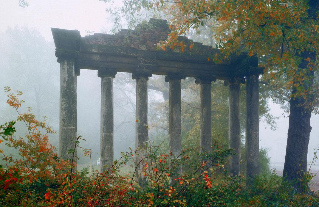 garden photographer london, Sebastian Kaps, 7 Säulen, Sieben Säulen