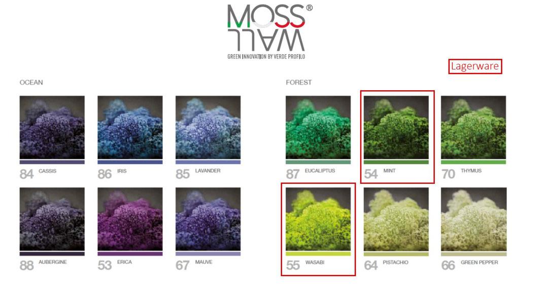 MOSSwall Farben
