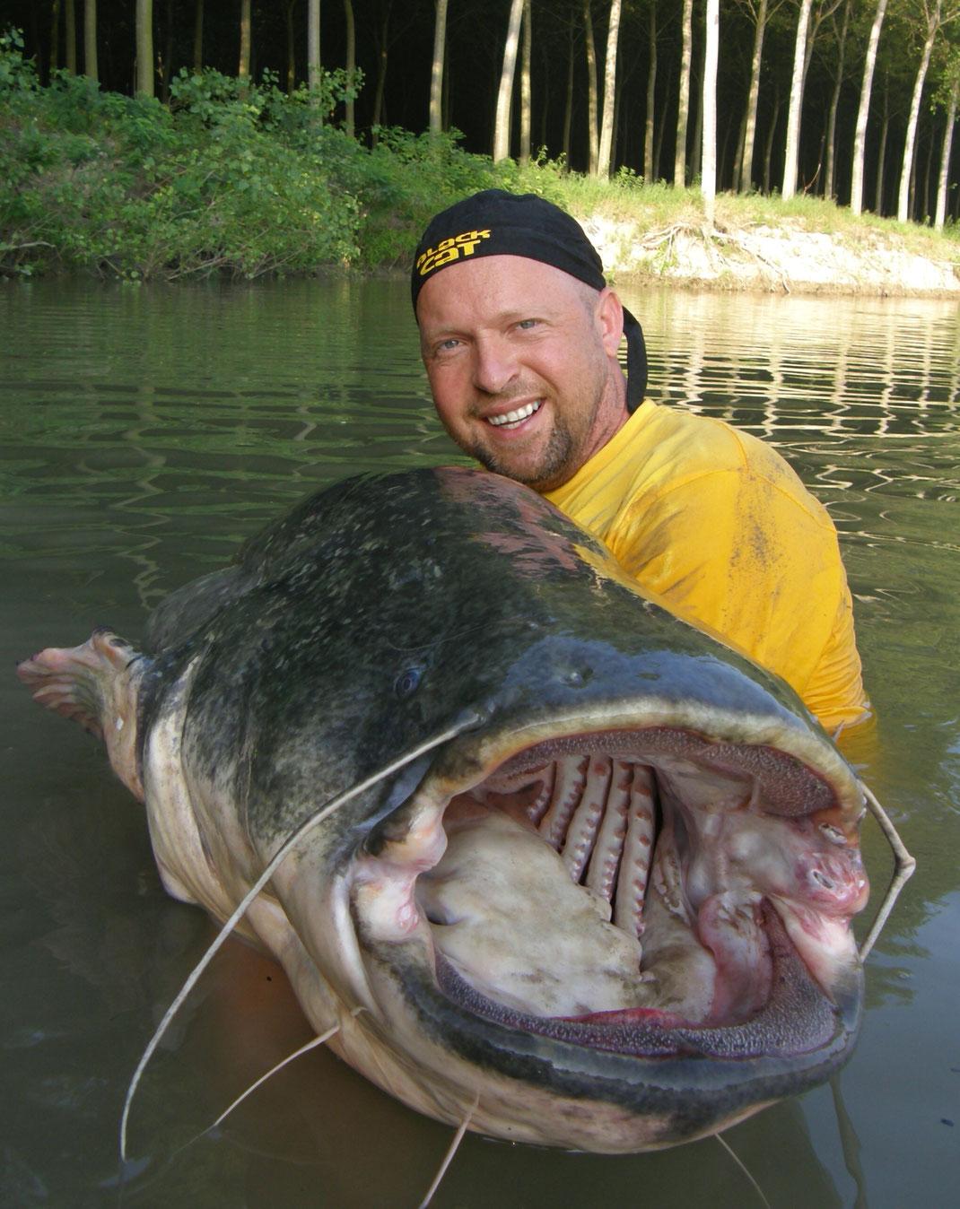 Nach einer letzten Flucht konnte ich den Fisch erfolgreich mit dem Wallergriff landen.Beim späteren Wiegen zeigt der Räuber ein stattliches Gewicht von 72 Kilo.
