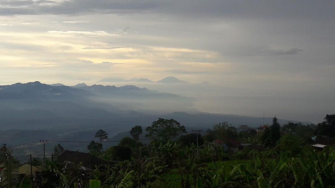Land on offer for sale by owners direct. North Bali land for sale