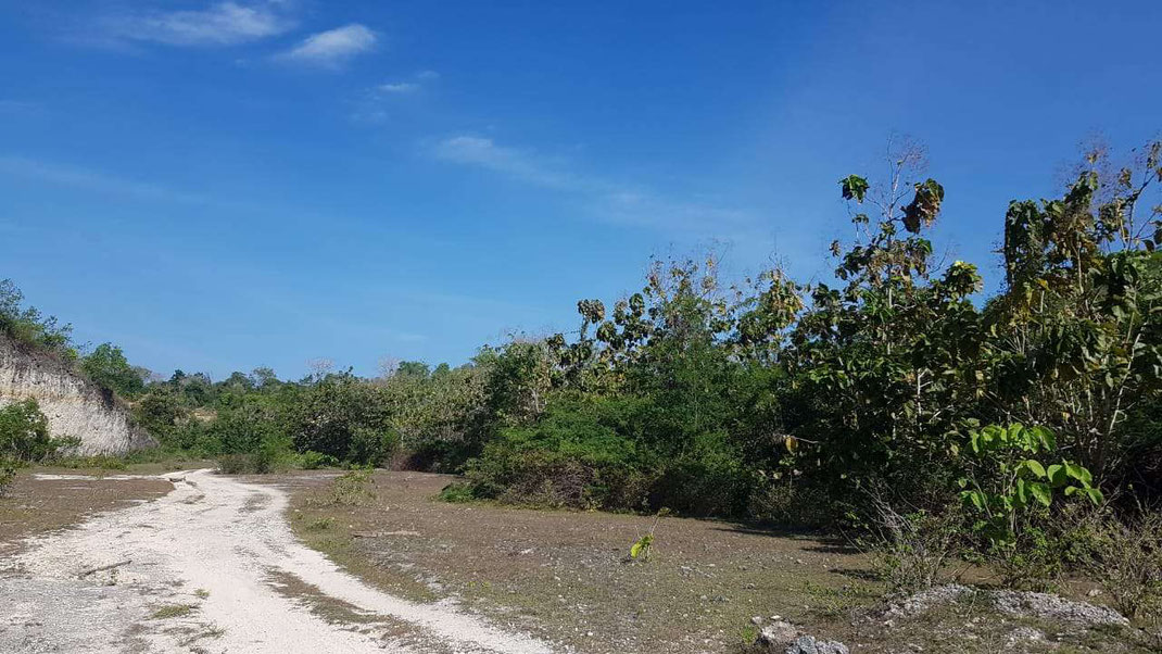 Land on offer for sale by owners direct.  Bukit land for sale by owner