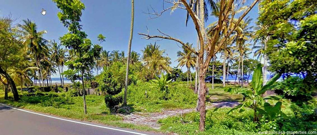Land for sale by direct owner. West Bali land for sale near Pekutatan