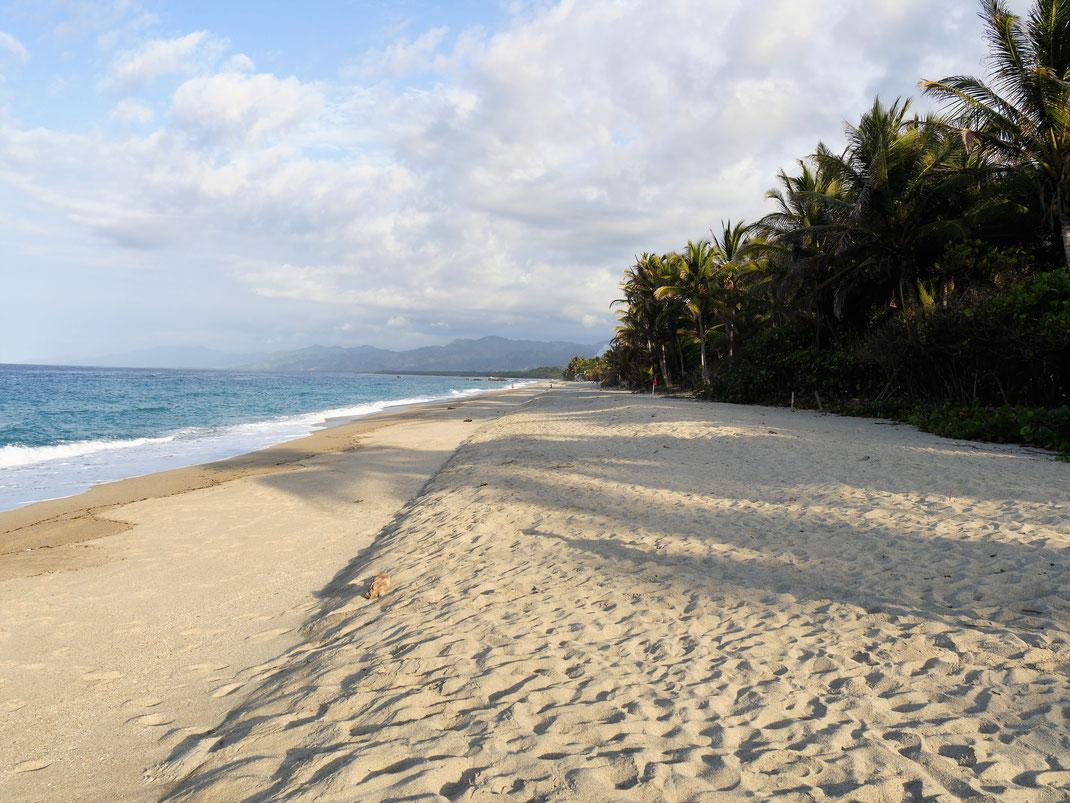 Ein Traum von einem Strand: Die Playa Los Angeles, Kolumbien (Foto Jörg Schwarz)