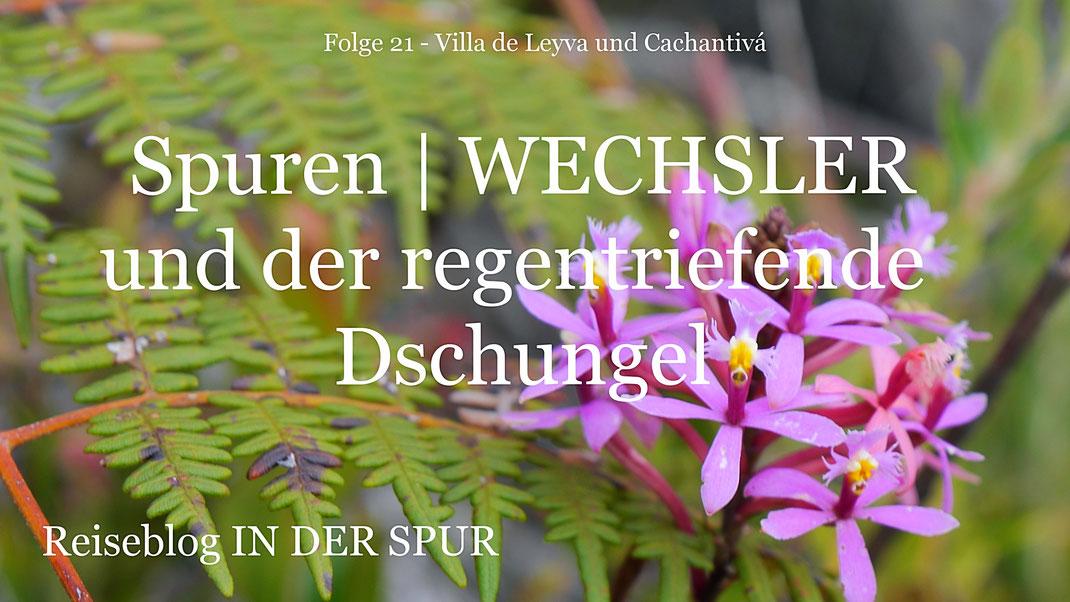 Reiseblog IN DER SPUR, Reiseberichte, Reisereportagen, Kolumbien, Fotografie Jörg Schwarz, Reise, Länder, Weltreise, slow travel, outdoor, Villa de Leyva, Gachantivá