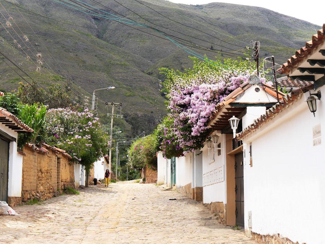 Im Hintergrund verschattet ein Nationalpark gelegentlich die letzten Häuser vor dem Berg... Villa de Leyva, Kolumbien (Foto Jörg Schwarz)