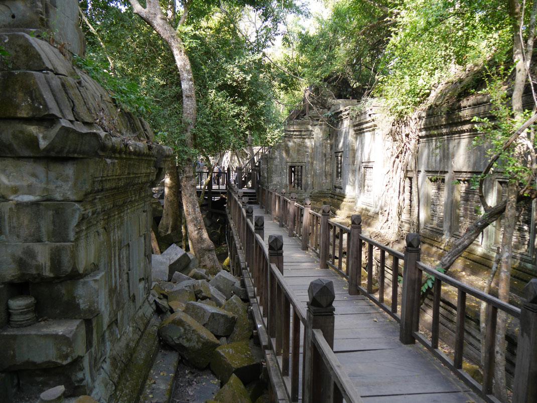 Der Aufstieg ist steil... Ta Keo, Kambodscha (Foto Jörg Schwarz)