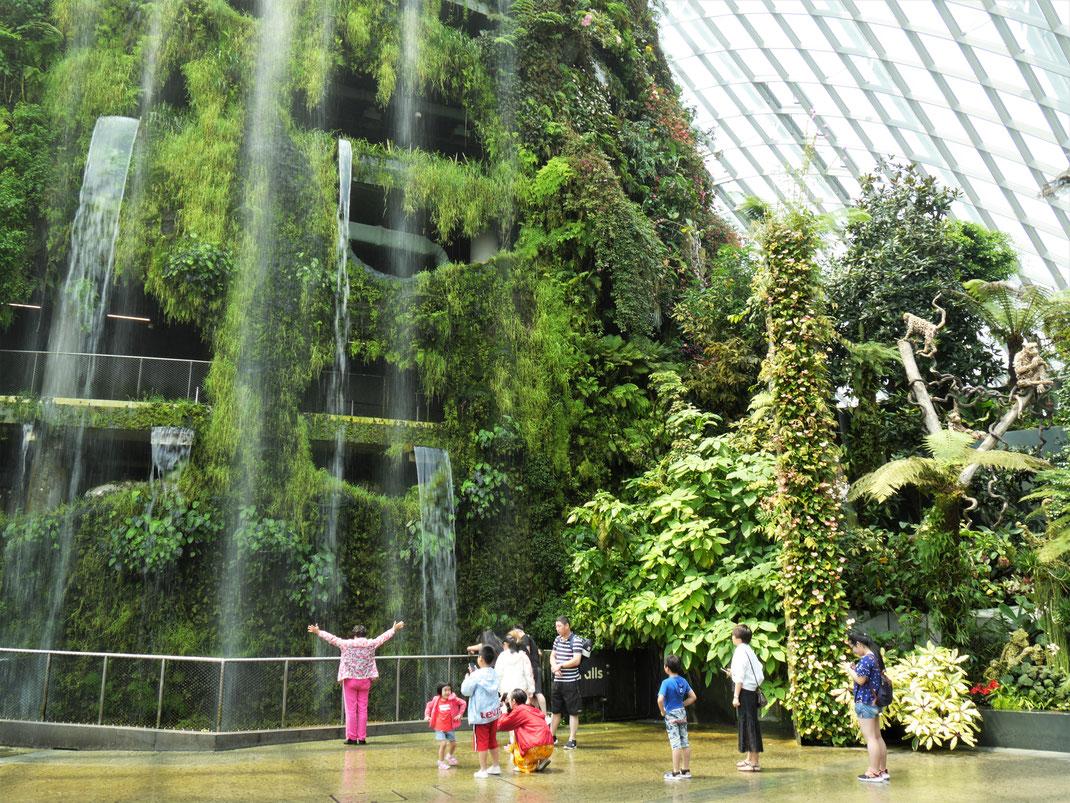 Spurenwechsler Reiseblog Reise Reisereportagen Reiseberichte slowtravel slow travel blog Weltenbummler Backpacker Weltreise Malaysia Singapur Asien Reisetipps Natur Kultur Fotografie Reisefotos