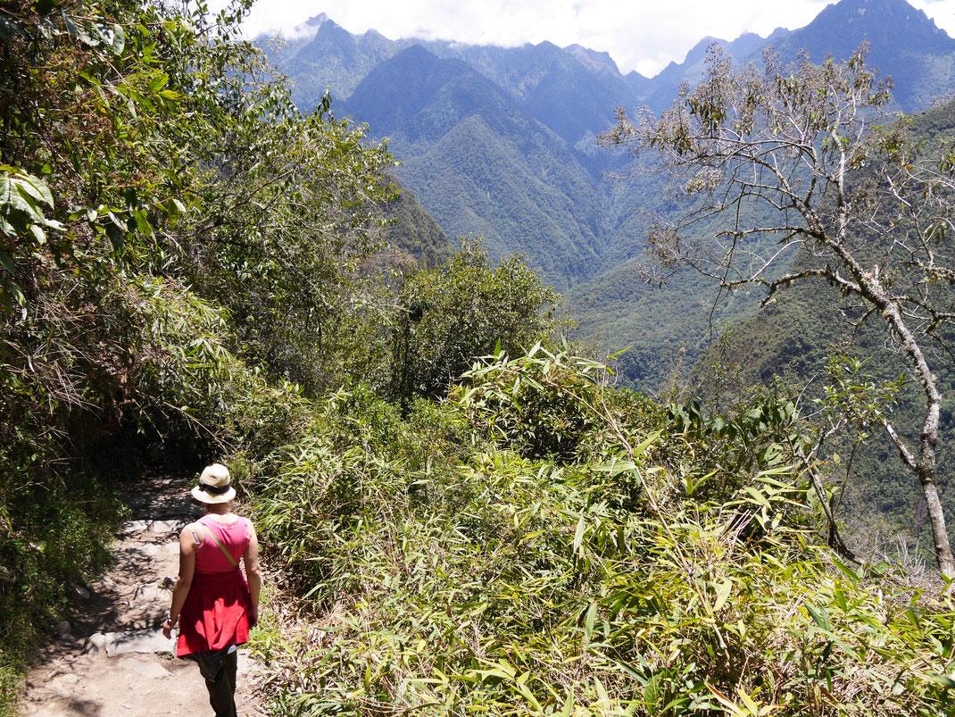 Meist ist es eng und steil beim Abstieg von den Ruinas... Machu Picchu, Peru (Foto Jörg Schwarz)