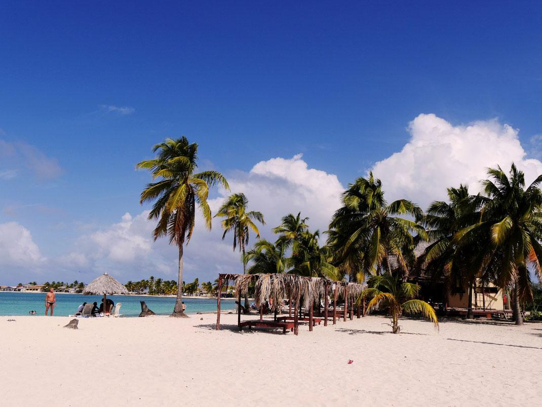 Die Playa los Cocos muss sich vor keinem anderen Strand der Insel verstecken! (Foto Jörg Schwarz)