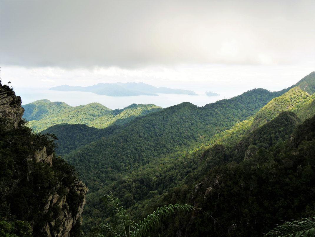 Was für ein überwältigender Blick auf das Dach des Regenwalds beim Gunung Mat Cincang, Langkawi, Malaysia (Foto Jörg Schwarz)