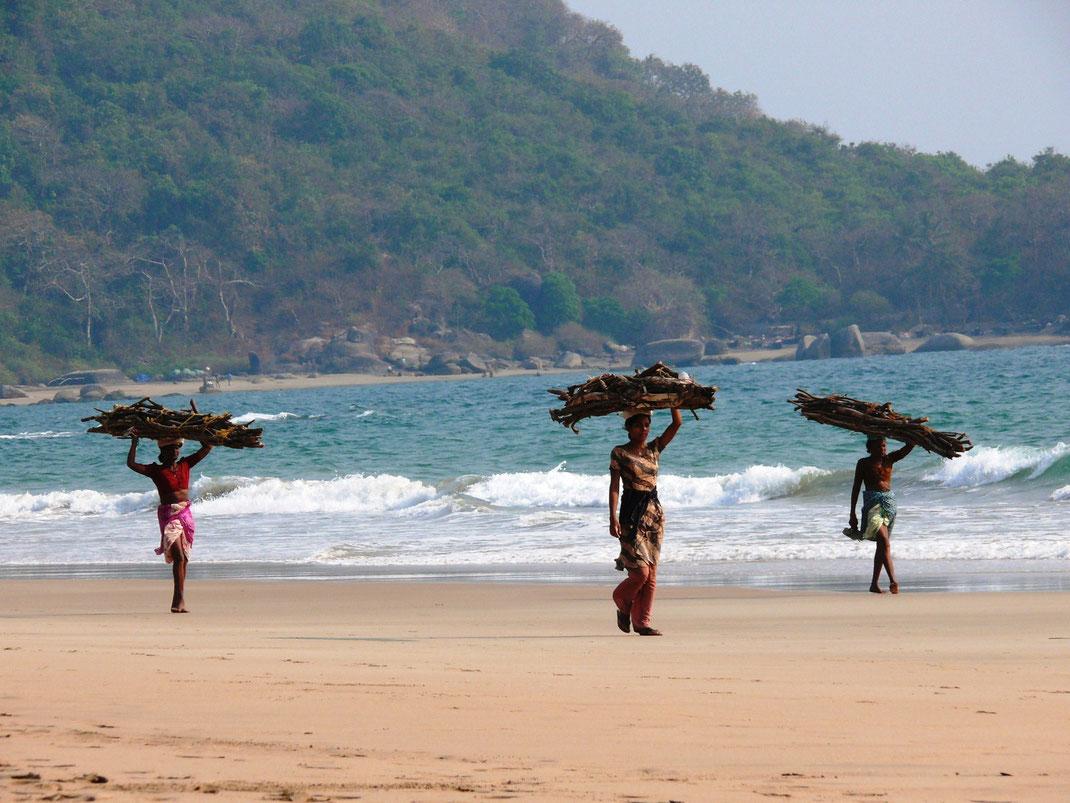 Auch Indiens Frauen arbeiten hart! Holzsammlerinnen bei der Arbeit (Foto Jörg Schwarz)