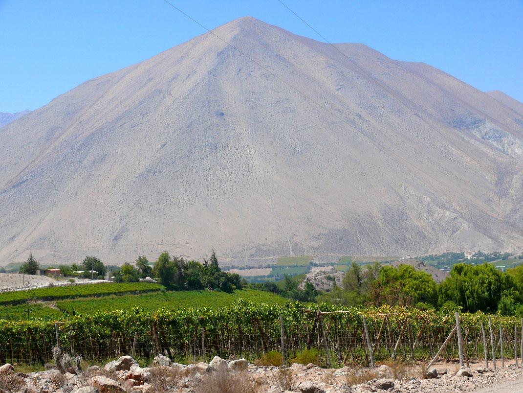 Die gesamte Gegend ist malerisch: Dank eines ausgeklügelten Wassermanagements strahlt das Tal in unzähligen Grüntönen vor den umliegenden Bergen  (Foto Jörg Schwarz)