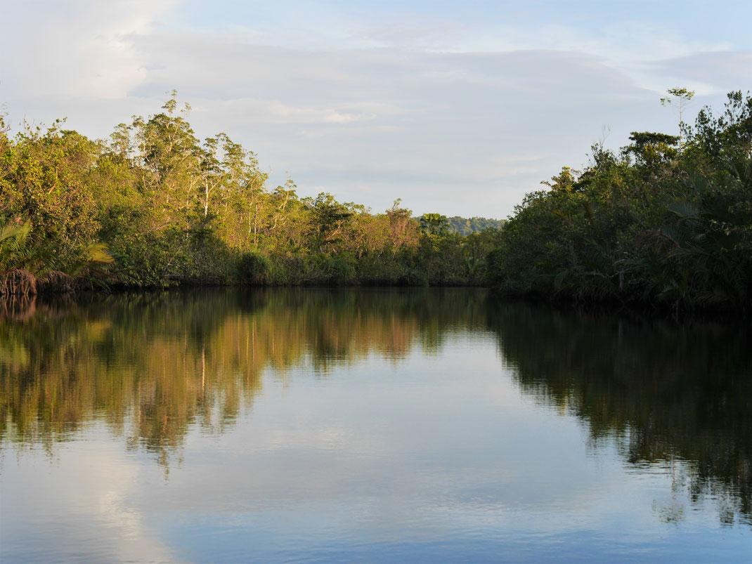 Aber was für eine wundervolle Idylle im Licht der untergehenden Sonne... Preat-Fluss, Kambodscha (Foto Jörg Schwarz)