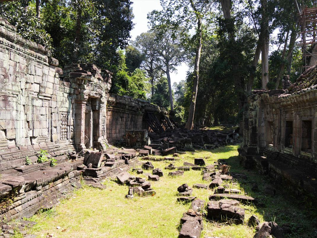 Die Atmosphäre in diesem Tempel ist einzigartig - wie gerade frisch entdeckt... Preah Khan, Kambodscha (Foto Jörg Schwarz)
