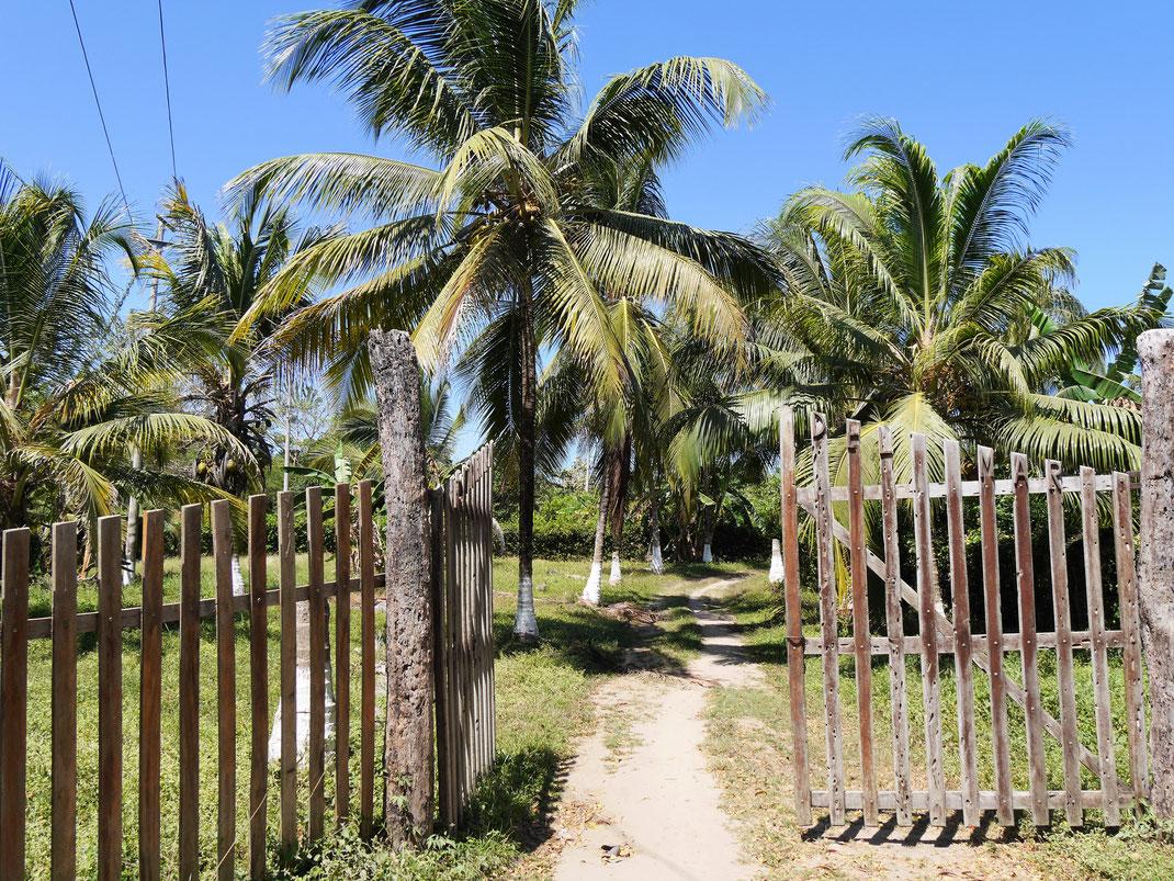 Spurenwechsler Reiseblog Reisetips Reise slow travel slowtravel Kultur Natur Weltreise Travel Reisefotografie Fotografie Photography Beaches Playa Kolumbien Colombia
