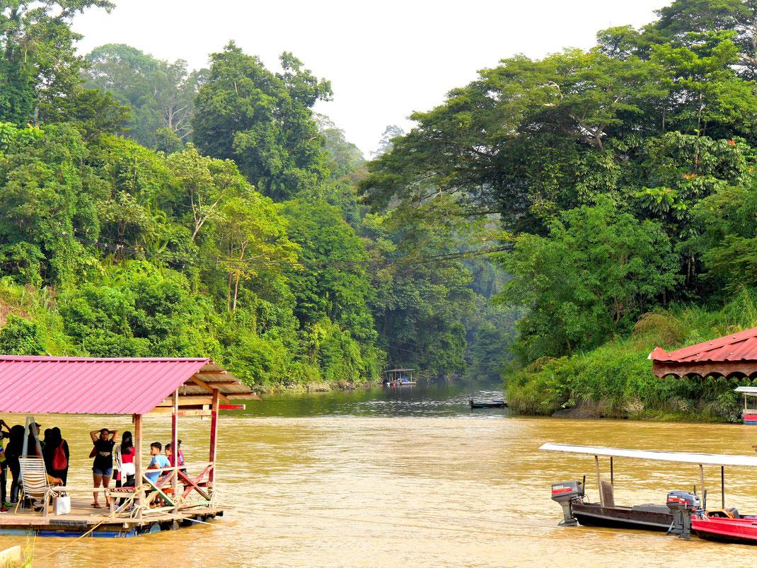 Der Gunung Tembeling und seine Nebenarme gehören zu den Adern des Taman Negara Nationalparks, Malaysia (Foto Jörg Schwarz)