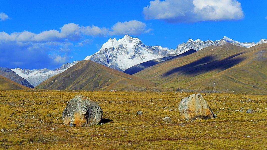 Großartiges Gold-Gelb der Puna, Cordillera Blanca, Peru (Foto Jörg Schwarz)