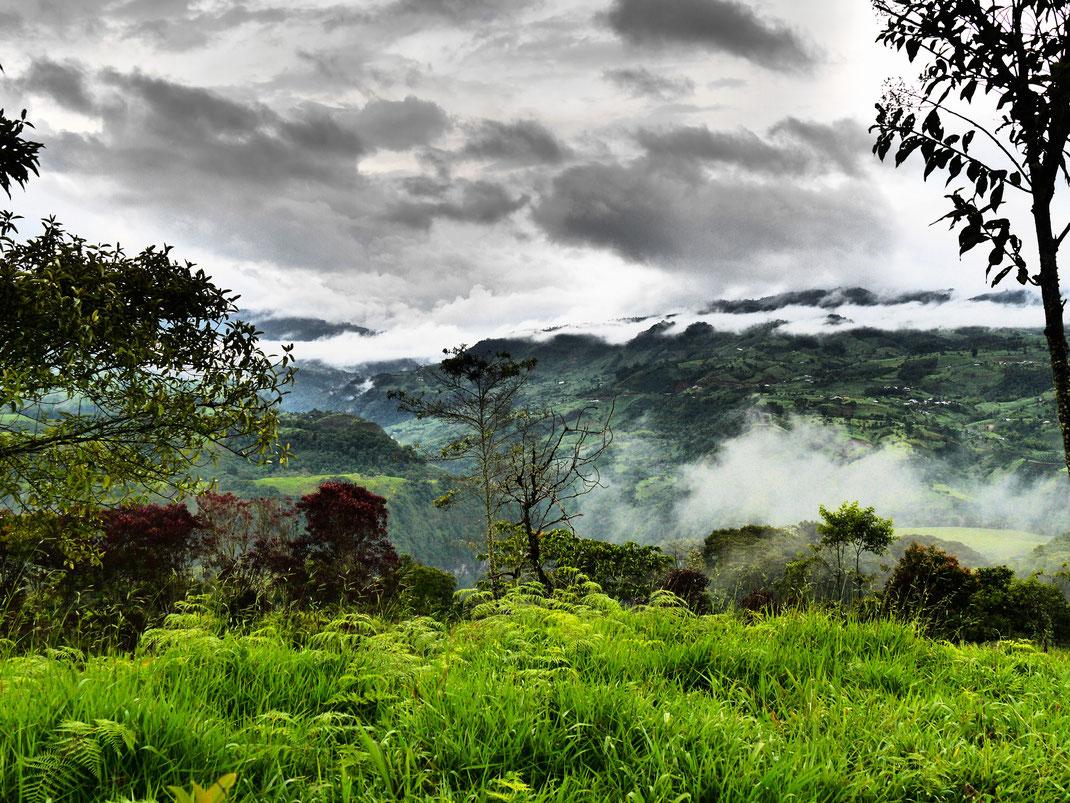 Eine feucht-grüne Traumlandschaft im Dramatic-Modus... San Augustin, Kolumbien (Foto Jörg Schwarz)