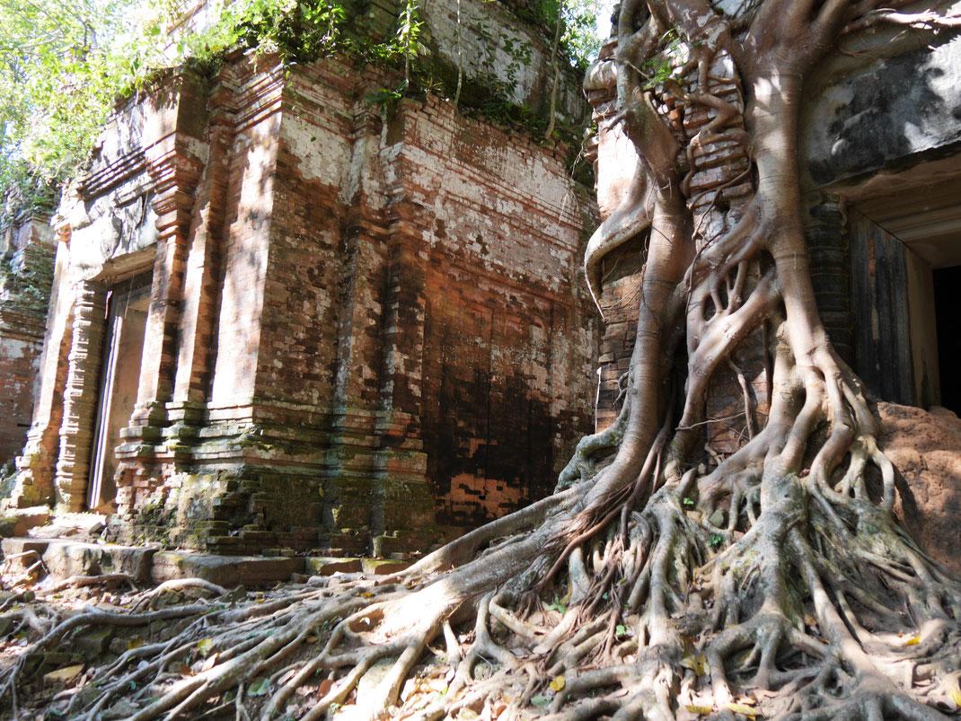 Region Preah Vihear, Kambodscha (Foto Jörg Schwarz)