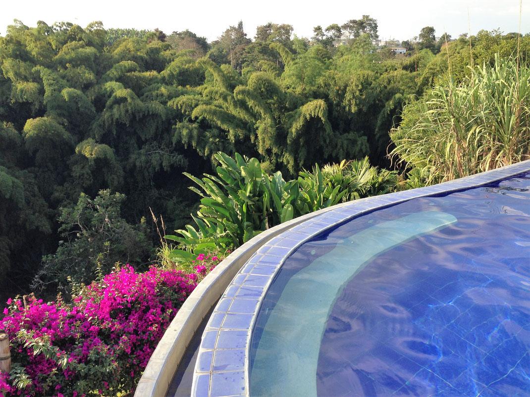 Blick vom Pool ins Tal - Bambus satt! Bei Armenia, Kolumbien (Foto Jörg Schwarz)