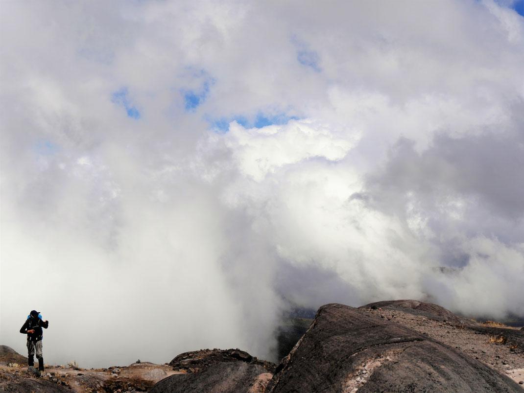 Im oberen Bergabschnitt kommen zunehmend Wolken auf... NP Los Nevados, Kolumbien (Foto Jörg Schwarz)