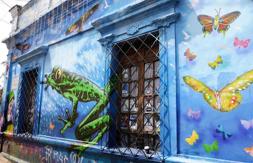 Nur ein Beispiel von Streetart in Bogotá, Kolumbien (Foto Jörg Schwarz)