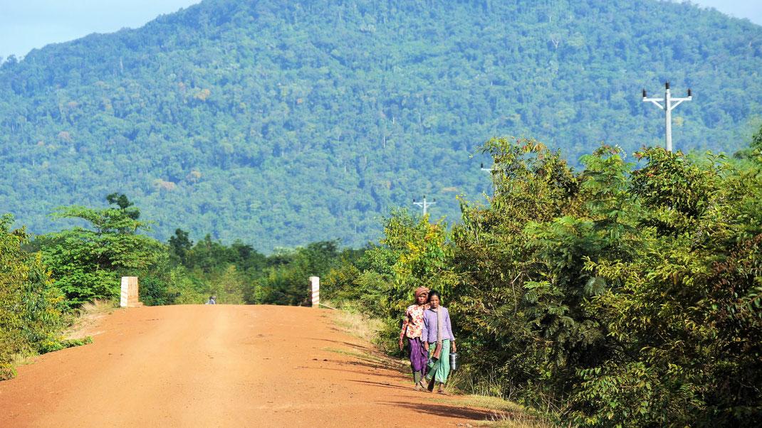Was idyllisch wirkt und aussieht ist natürlich ein Leben voll harter Landarbeit... Region Preah Vihear, Kambodscha  (Foto Jörg Schwarz)