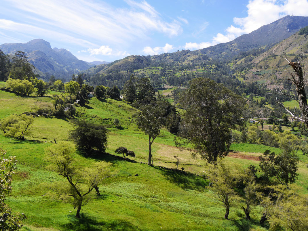 Man muss gar nicht weit laufen: Unmittelbare Umgebung von El Cocuy, Kolumbien (Foto Jörg Schwarz)