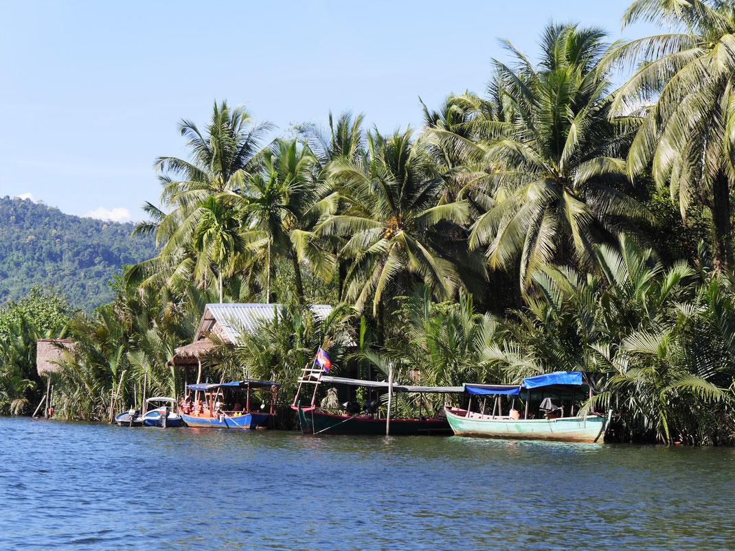 Ausgedehnte Flussfahrten vermitteln die pure Exotik und Schönheit der Uferzonen dieser Dschungelregion am Preat-Fluss, bei Tatai-Wasserfall, Region Koh Kong, Kambodscha (Foto Jörg Schwarz)