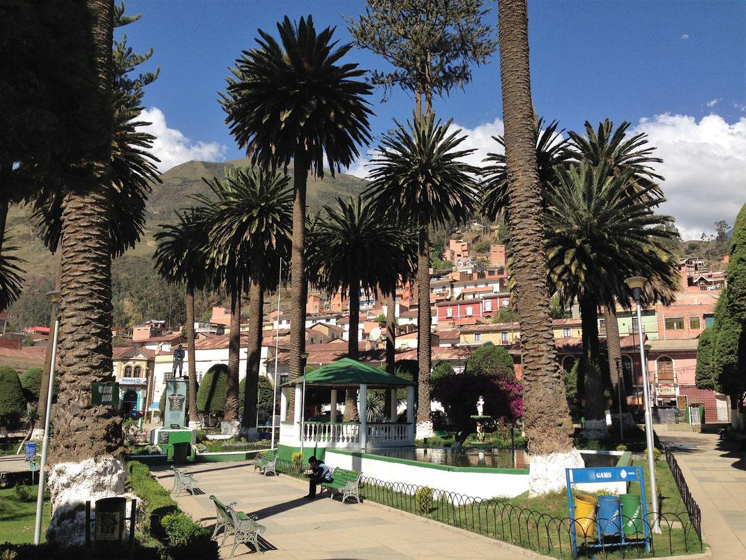 Die palmenbestandene Plaza de Sorata, Sorata, Bolivien (Foto Jörg Schwarz)