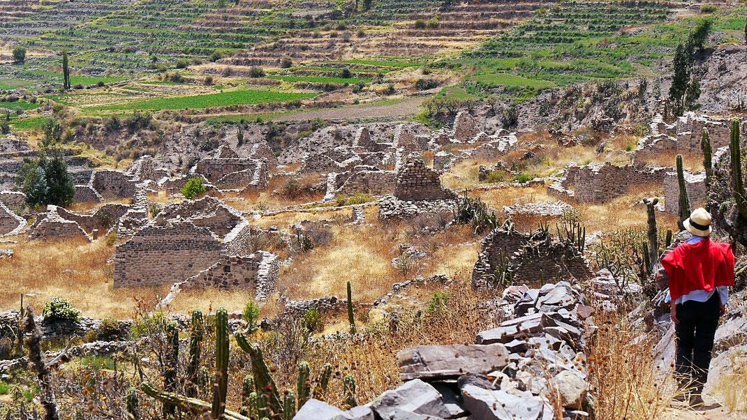 Wir wandern in die Ruinenstätte Uyo Uyo ein, Chivay, Peru (Foto Jörg Schwarz)