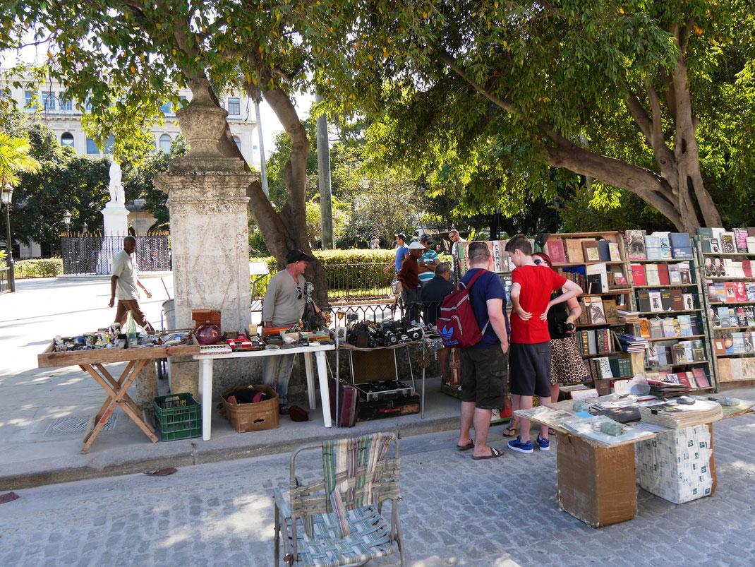 In Havanna mit alten Büchern sein Spanisch aufbessern (Foto Jörg Schwarz)