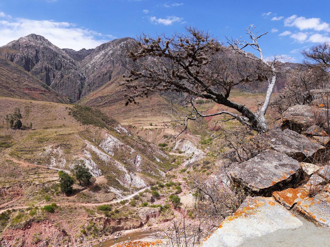 Die Ausssichten sind grandios! Cordillera de los Frailes, Bolivien (Foto Jörg Schwarz)