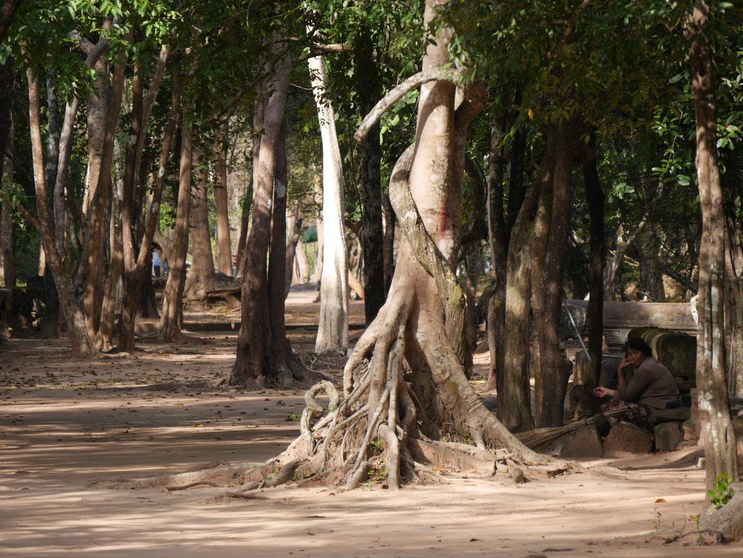 Der durchaus innovative Neubau des Ta Keo-Tempelbergs blieb unvollendet und ist dennoch eindrucksvoll, Ta Keo, Kambodscha (Foto Jörg Schwarz)