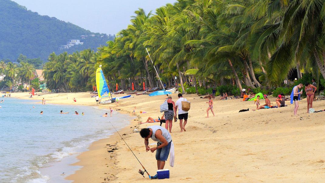 Jammern auf hohem Niveau, wenn man am Maenam Beach absteigt... Koh Samui, Thailand (Foto Jörg Schwarz)