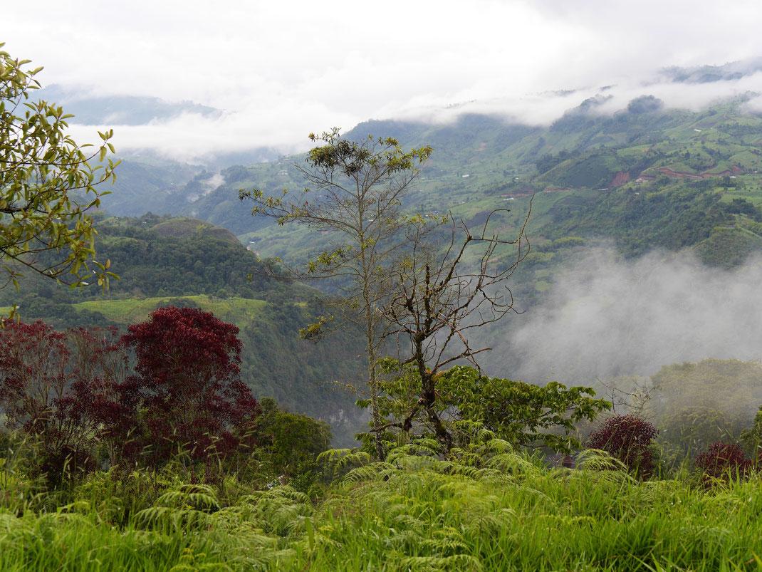 Spektakuläre Ausblicke in die feucht-warme Landschaft, San Augustín, Kolumbien (Foto Jörg Schwarz)