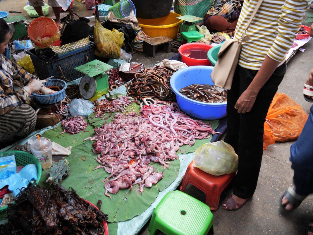 Eine Delikatesse: Kröten und Frösche, Battambang, Kambodscha (Foto Jörg Schwarz)