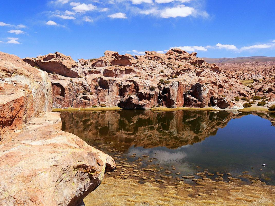 Die Laguna Negra, Reserva de Fauna Andina, Bolivien (Foto Jörg Schwarz)