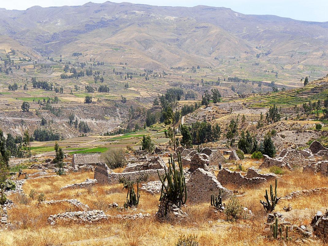 Die Ruinen von Uyo Uyo - Spuren der Inka in Peru, Chivay, Peru (Foto Jörg Schwarz)