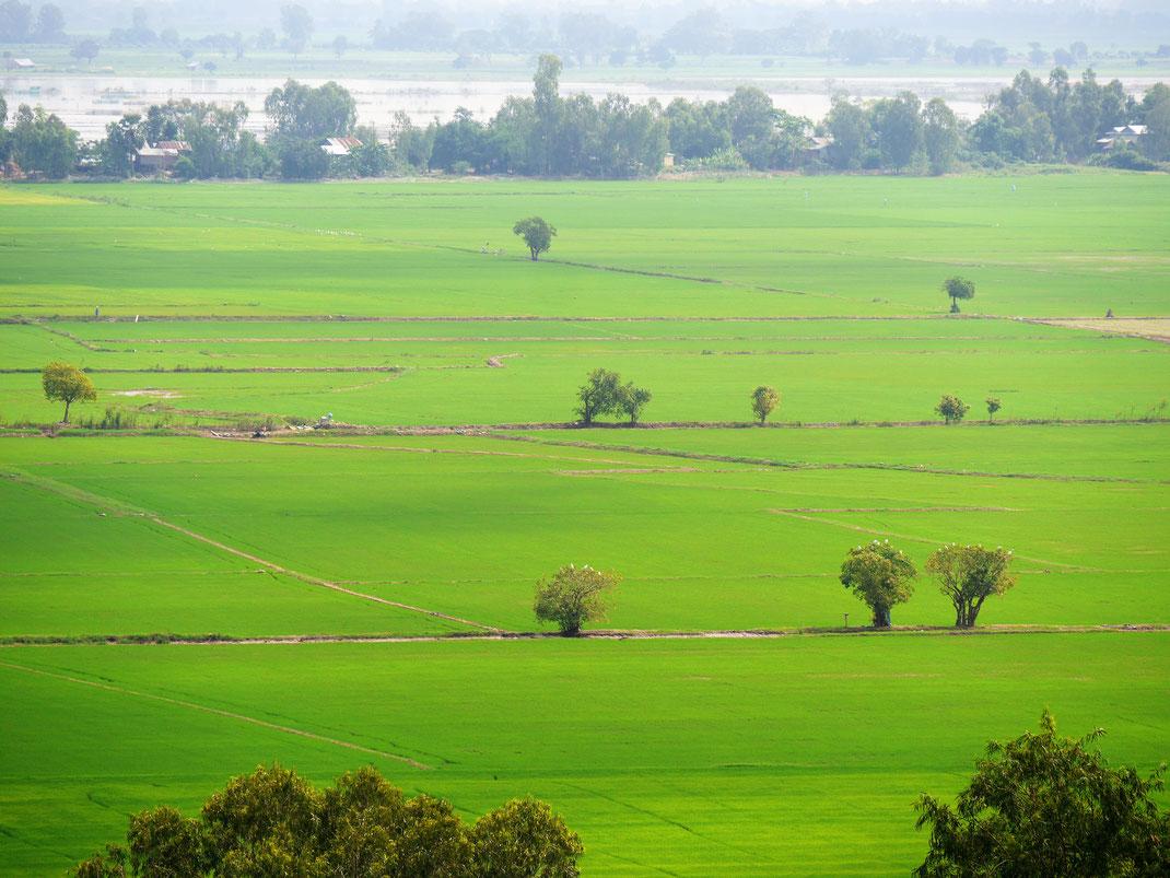Von den Hügeln in der Region Angkor Borei hat man fantastische Ausblicke in die Landschaft, Region Takeo, Kambodscha (Foto Jörg Schwarz)
