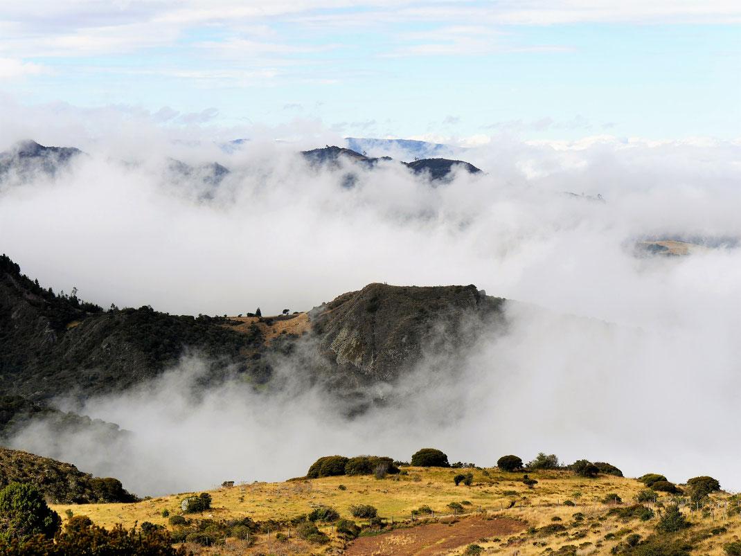 Atemberaubende Nebelschwaden im Tal, Sonne und blauer Himmel bei uns auf dem Berg... Páramo de Ocetá, bei Monguí, Kolumbien (Foto Jörg Schwarz)