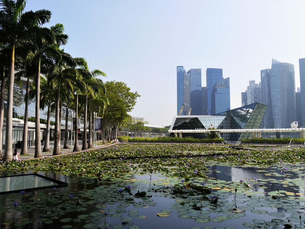 Am Marina Bay Sands, Singapur (Foto Jörg Schwarz)