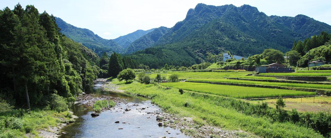 熊野市神川、育生町エリアの写真