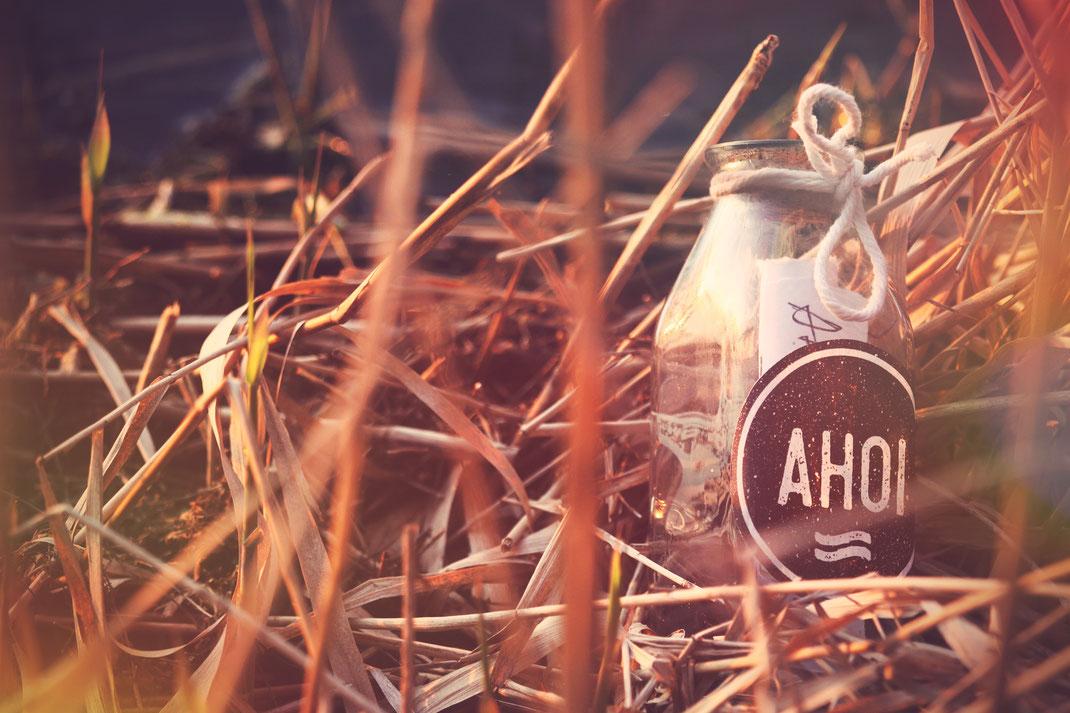 Plankenreiter Kontakt Flaschenpost