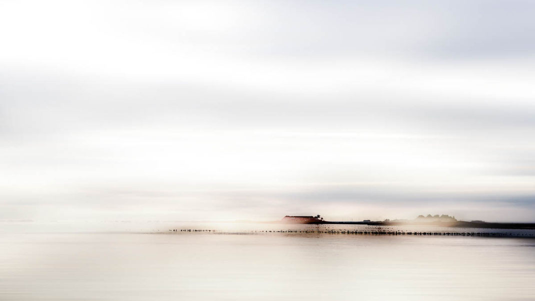 Morgennebel  © Reinhard Witt